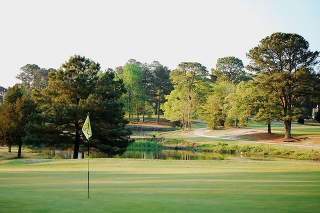 Image result for Who Owns Public Golf Courses?