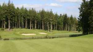 Remedy Oak Golf: #2