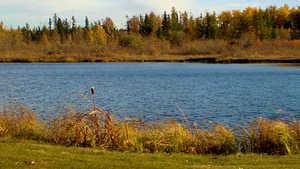 Edmonton Springs GC