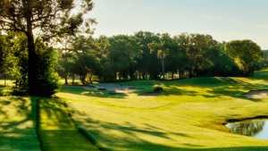 Innisbrook Resort & Golf Club - Fox Squirrel