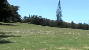 Ironwood Hills GC