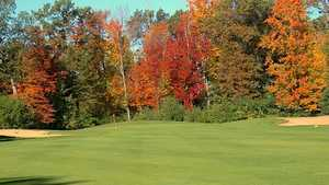 Glacier Wood GC: #7