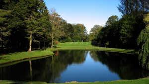 Lisburn Golf Club - hole 6