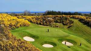 Druids Glen Golf Resort - Glen Golf Club