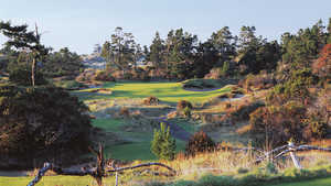 Bandon Trails: #17