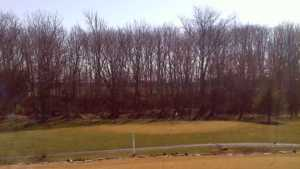 Quail Creek GC