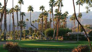 View from Rancho Las Palmas South Nine