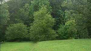 Maple Leaf GC