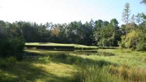 Whispering Pines GC: #17