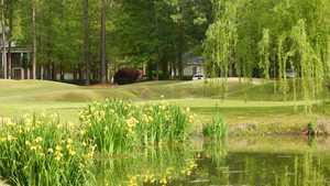 Coosaw Creek CC