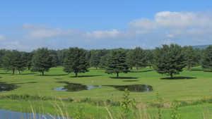 Meadows GC