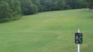 Collins Hill GC: #6