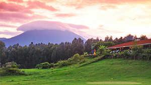 Gorillas Nest Lodge & Resort GC