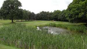 14th at Romiley