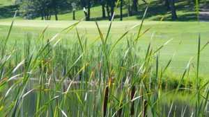 Lake City Golf