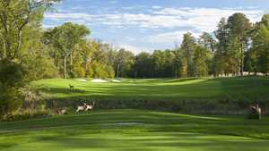 The GC at Lansdowne - The Norman: #11