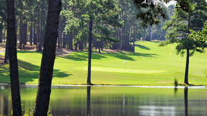 Forest Creek GC