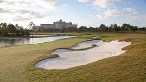 Shingle Creek GC: #14