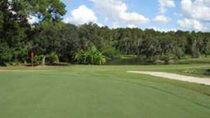 University of South Florida GC - The Claw: #12
