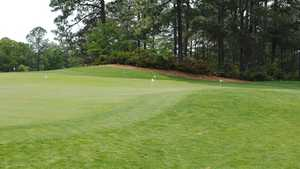 Houndslake CC: putting green