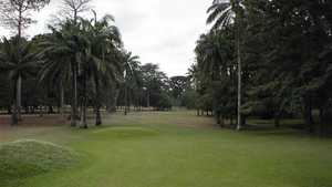 International Institute of Tropical Agriculture GC: #3