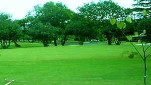 Windcrest GC: putting green