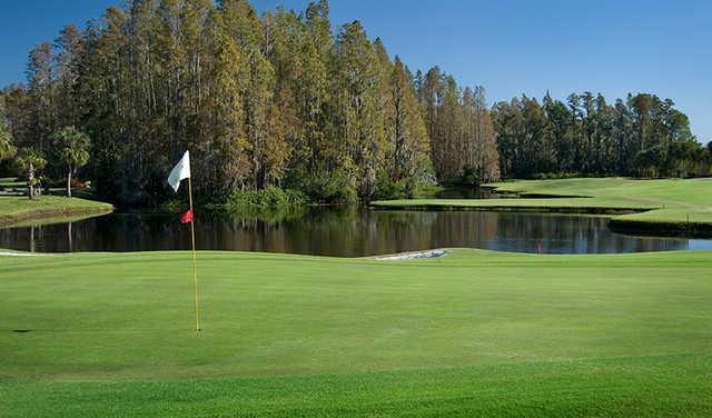 Saddlebrook the villages florida golf course for Saddelbrook