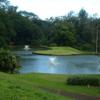 Royal Hawaiian GC: #11