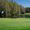 Saddlebrook at Saddlebrook Golf & Tennis Resort: #9