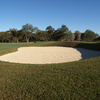Brackenridge Park #1