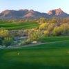 Saguaro at We-Ko-Pa GC: #17