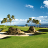 Waikoloa Beach R - Kings: #5