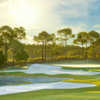 Tranquilo GC at Four Seasons Resort: #14