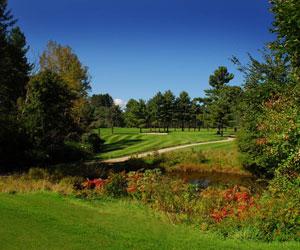 Windermere & The Baldwins Resort Stay & Play