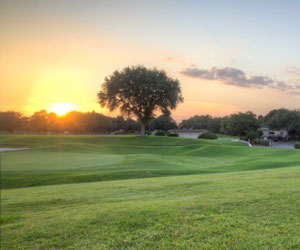 Park, Beach & Play with TPC Tampa Bay