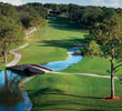 50th Anniversay Golf Package at Mission Inn Resort & Club